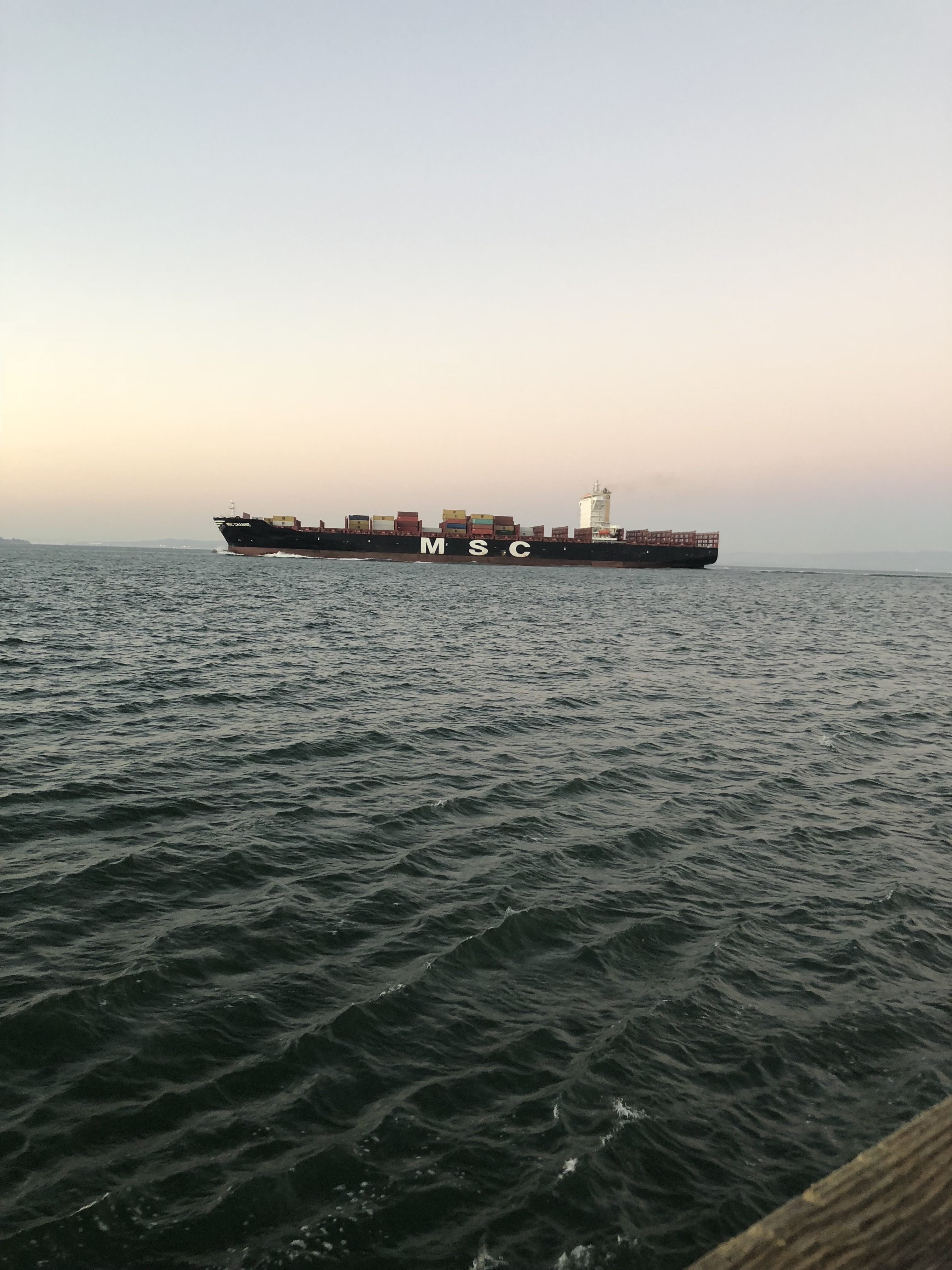 ShippingShip